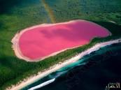 بالصور: ظاهرة طبيعية غريبة تحوَل مياه بحيرة إلى اللون الوردي في استراليا