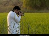 الرز الحساوي ..لحظة توثيق – بعدسة المصٌور  حسين المبارك