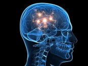 اكتشاف جزيئة تحمي الدماغ من إدمان القنب الهندي