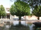"""بالصور … اسبوعين والماء يغرق الشارع و وزارة المياه """" مش هنا"""""""