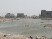 """بالصور.. الإهمال يُغرق أحد أحياء #الأحساء.. ومصلحة المياه""""غائبة"""" !"""