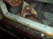 بالصور.. جمرك البطحاء يُحبط تهريب 54 كلغ لحم خنزير بشاحنة قادمة للمملكة !!