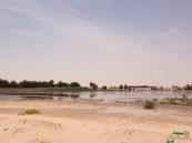 بالصور.. هجرة في #الأحساء تغمرها المستنقعات والأهالي في خطر !