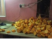 بالصور.. الأمانة تطيح بأحد معامل العصائر الشهيرة في #الأحساء