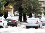 الأرصاد: توقعات بهطول أمطار رعدية بالمنطقة الشرقية والرياض