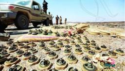 مسؤول يمني: المليشيا الانقلابية زرعت أكثر من 250 ألف لغم بمناطق سكنية