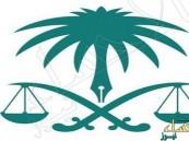 6761 وظيفة شاغرة في القضاء والنيابة العامة