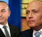 مكالمة هاتفية مفاجئة بين وزيري خارجية مصر وتركيا