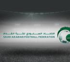 تعرّف على الآلية الجديدة للصعود والهبوط في الدوري السعودي