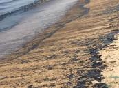 بالصور والفيديو… الأرصاد توضح حقيقة التلوث النفطي على شواطئ الشرقية