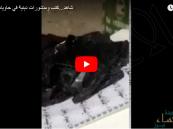 شاهد بالفيديو.. مطبوعات دينية في حاوية قمامة مدرسية بالشرقية !!
