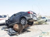 """بالصور.. من قوة الحادث طارت السيارة لتقتلع """"نخلة"""" من جذورها!!"""