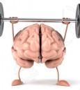 لتحسين الذاكرة.. إليك هذه النصائح الستة