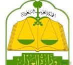 هيكلة شاملة لـ«الدوائر القضائية» في المحاكم