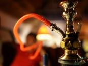النمر يحذّر السعوديين: رأس المعسل تكافئ 100 سيجارة