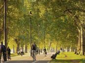 لماذا المشي في المتنزهات أفضل من المشي بالشوارع؟!