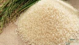 أسعار الأرز تقفز 22% في المملكة.. و60 يوماً ترفع الطن فوق 1300 دولار
