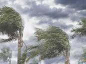 """الأرصاد: الشرقية  تتعرض لـ""""تقلبات جوية"""" الخميس والجمعة !!"""