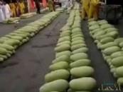 بالفيديو .. أسعار زهيدة للفاكهة و 3 ثمرات بطيخ بريال في جدة !!