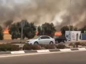 """شاهد بالفيديو .. هذا ما فعلته طائرات أهل غزة """"الورقية"""" في """"مستوطنة صهيونية"""" !!"""