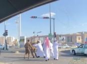 الجهات الأمنية تقبض على أشخاص اعتدوا على رجال أمن بالمدينة