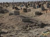 بالفيديو… في الأحساء الموت القادم من الشرق وناقوس الخطر يدق