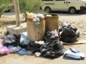 مع قرب مناسبة عيد الأضحى المبارك : بلدية العمران تهتم بصبغ الشوارع وتغيب النظافة العامة للبلدات الشمالية  .