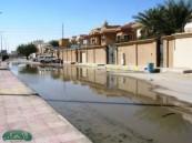"""مواطن لـ """" الأحساء نيوز """" غياب الدور الرقابي للبلدية والمياه حول وجه منزلي الى بحيرة مجاري ."""