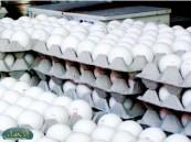تصدير البيض إلى الخارج يتسبب في رفع سعره إلى ( 18 ) ريال