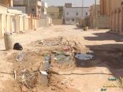 بالصور … حي الزهراء شوارع بدون سفلته