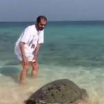 محمد-بن-راشد-يداعب-سلحفاة
