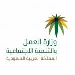 شعار-وزارة-العمل-والتنمية-الاجتماعية-1024x1024