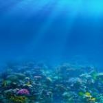 underwater-8