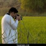 الرز الحساوي ..لحظة توثيق - بعدسة المصٌور  حسين المبارك