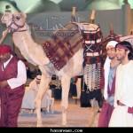 مهرجان سوق هجر2 - 2011