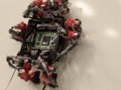 سحلية آلية إلى الفضاء قريباً للقيام بمهام الصيانة