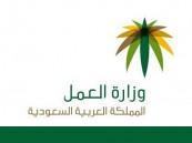 وزارة العمل تقرُّ الدعم الإضافي لرواتب الموظفين السعوديين