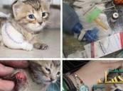 """عنصر من الجيش الحر يداوي """"قطة"""" جرحت بقصف النظام"""