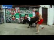 بالفيديو … ثور هائج يفسد فرحة فرنسي مهووس بـ (السيلفي)