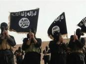أنباء عن ظهور داعش في إيران.. ووزير الداخلية ينفي