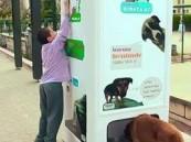 آلة لإطعام الكلاب الضالة بتركيا