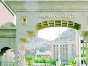 جامعة أم القرى تُعلن عن توفر وظائف إدارية وفنية شاغرة