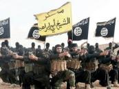 المفتي: سعوديون يذهبون لمناطق الصراع فيقتل بعضهم بعضا
