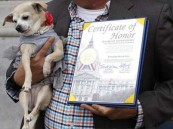 """لله في خلقه شؤون : كلب يصبح عمدة لـ""""سان فرانسيسكو"""" ليوم واحد"""