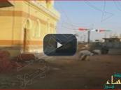 بالفيديو… مصري يحول حماراً لآلة رفع مواد البناء