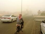 خلال الساعة الأخيرة.. تنبيهات من الإنذار المبكر لحالات مناخية في 8 مناطق