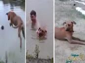 بالفيديو… رد فعل كلب شاهد صديقه يغرق في بحيرة