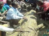 """""""تمساح"""" ضخم يلتهم سيدة في أوغندا"""