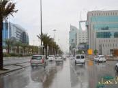 هطول أمطار مصحوبة برياح نشطة على مناطق الشرقية والرياض والقصيم