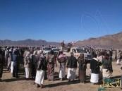 قبائل مأرب تحشد 35 ألف مقاتل لمواجهة الحوثيين